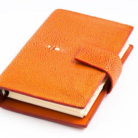 03986115-2-po-planer-rochen-orange-04_481x481