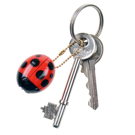 OH43601~OHTO-Ladybird-Keychain-Scissors_DTL3_P3