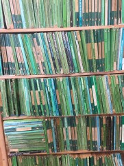 Books at an Oxfam Charity Shop