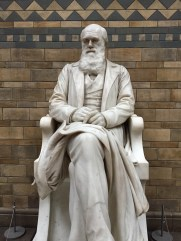 Statue of Charles Darwin at the Natural History Museum