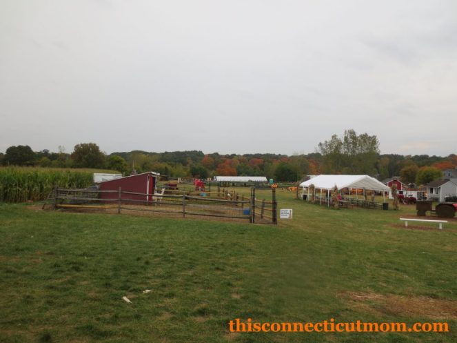 Foster Family Farm- Overview