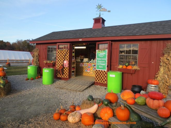 Meadowview-Red Shed