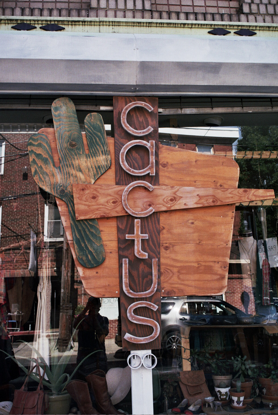 The Cactus Collective