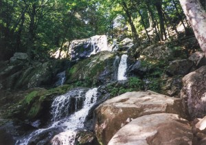 Shenandoah Valley