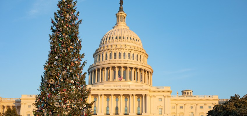 Christmas Tree at the U.S. Capitol