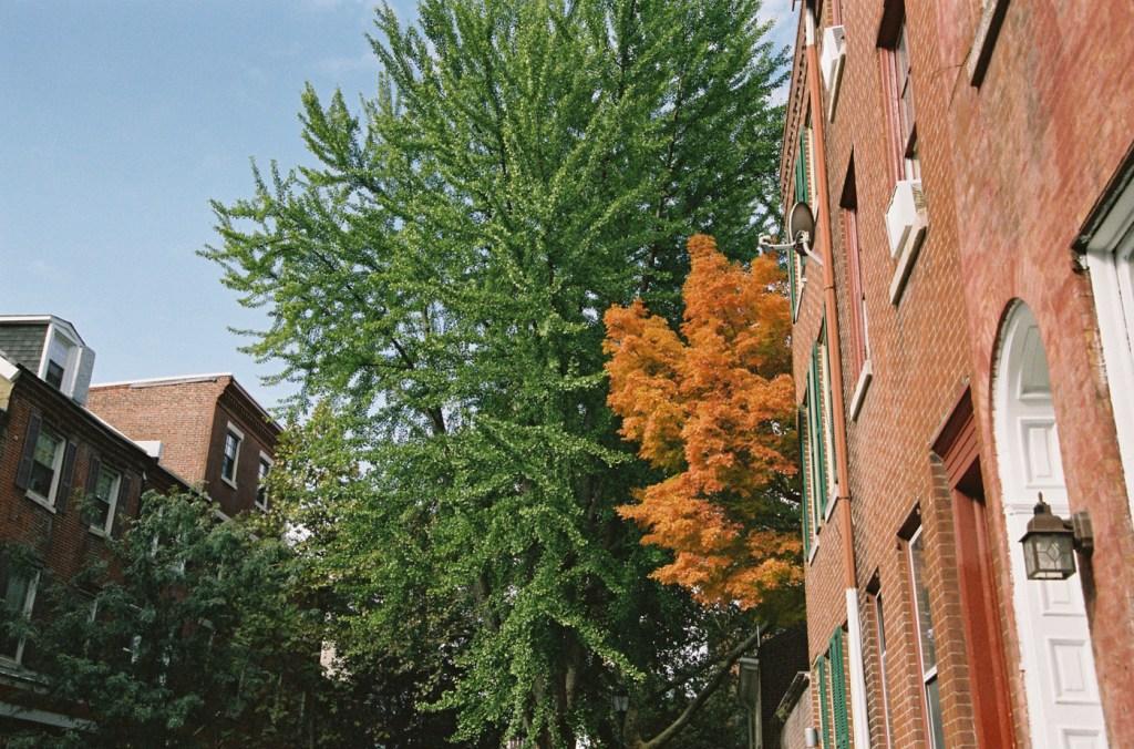 Autumn in Philadelphia