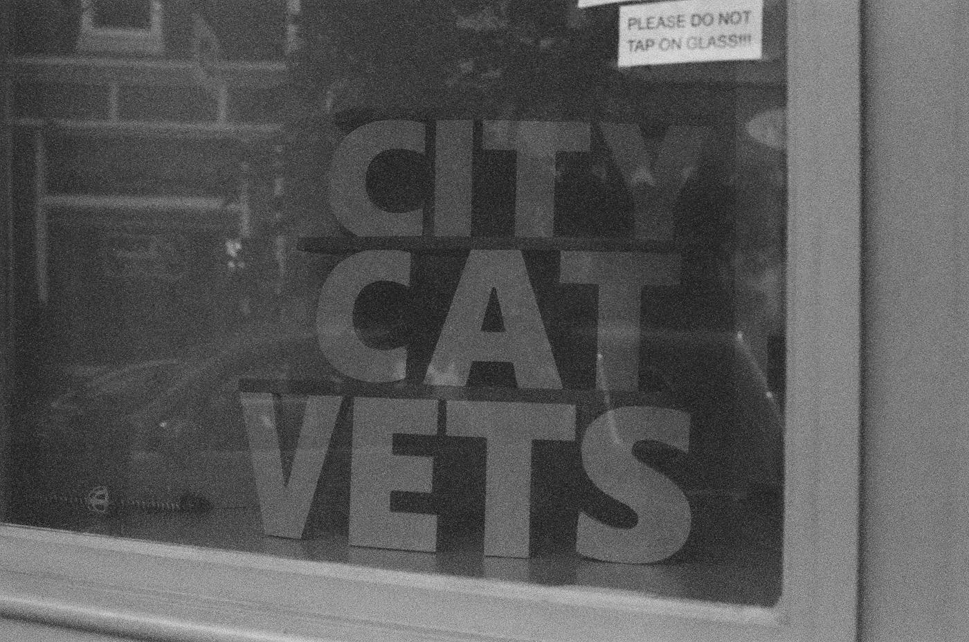 CITY CAT VETS