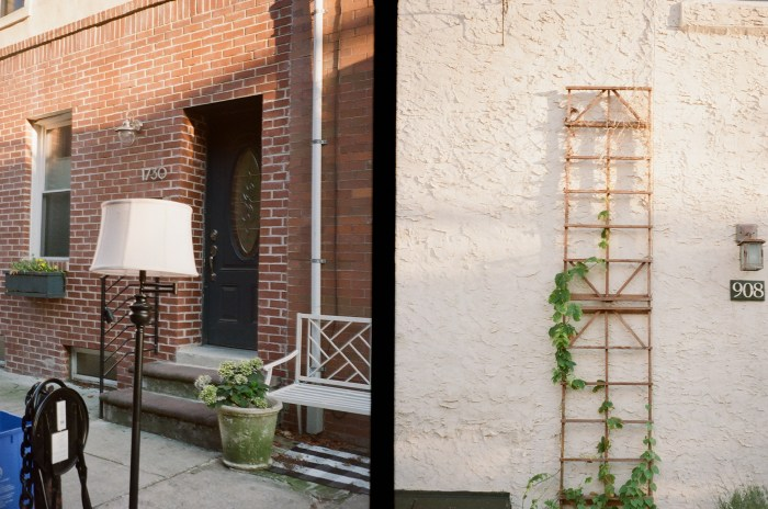 Lamp and Trellis