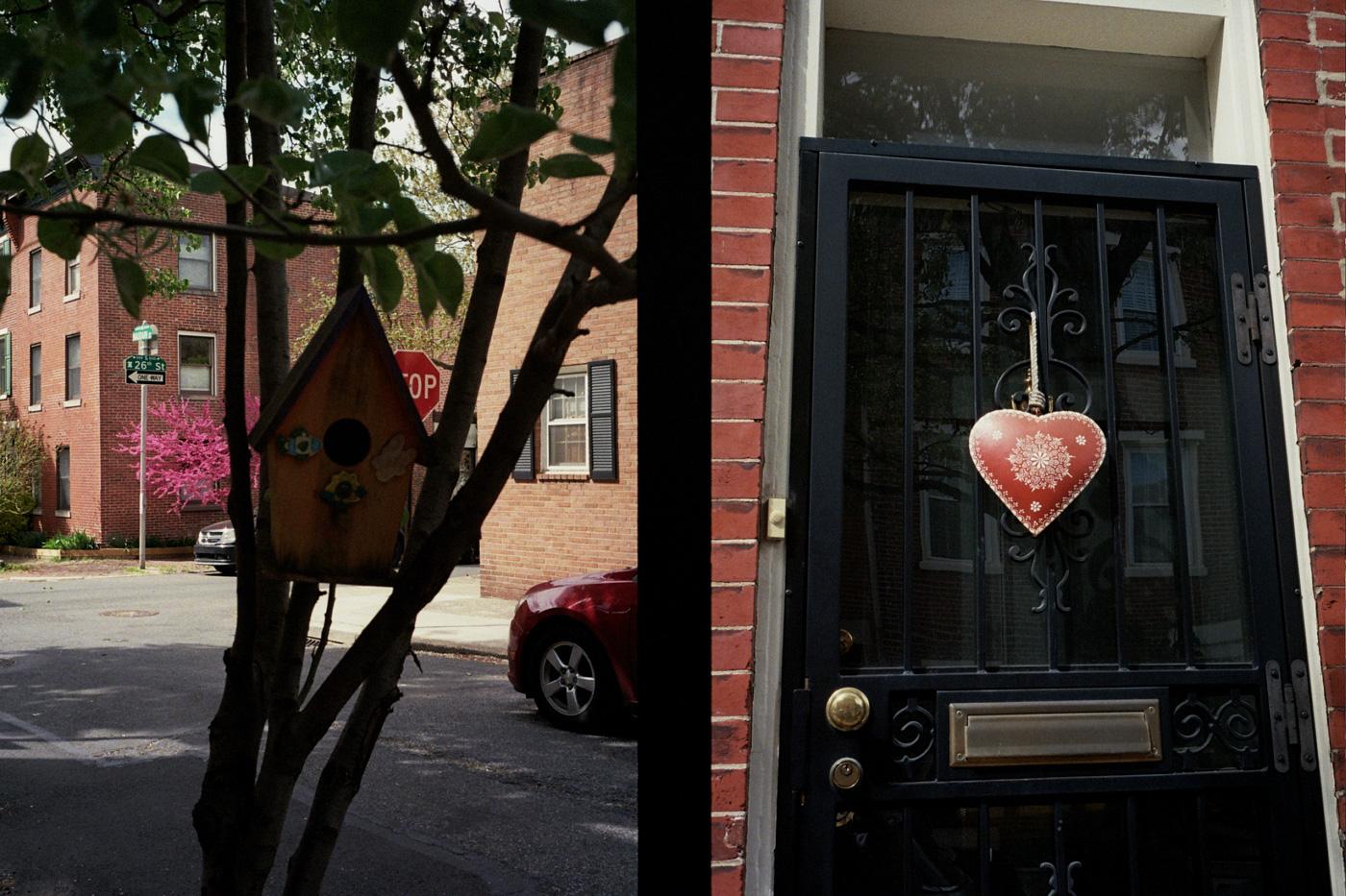 Birdhouse and Door Decortation