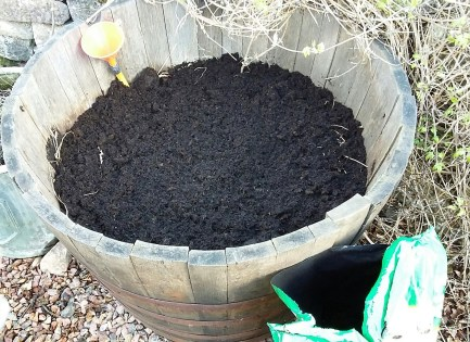 Step 3: Cover Your Homemade Urinal with Compost and Sow Seed