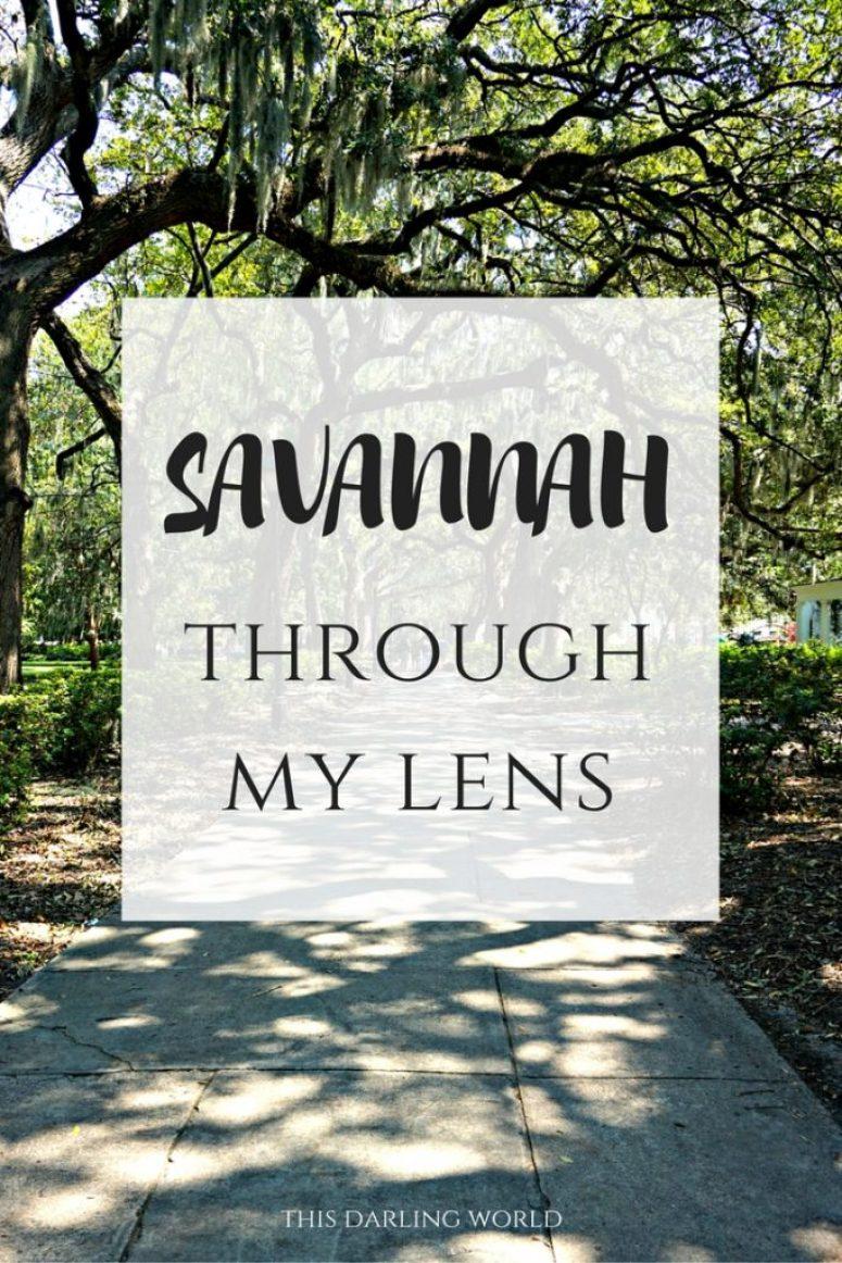 Savannah Through my Lens   thisdarlingworld.com