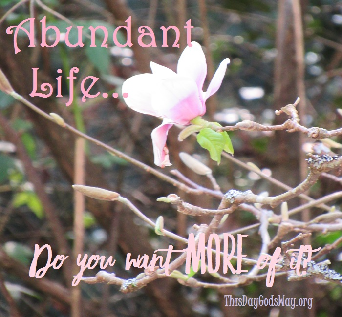 What Does An Abundant Life Look Like? Do You Want It?