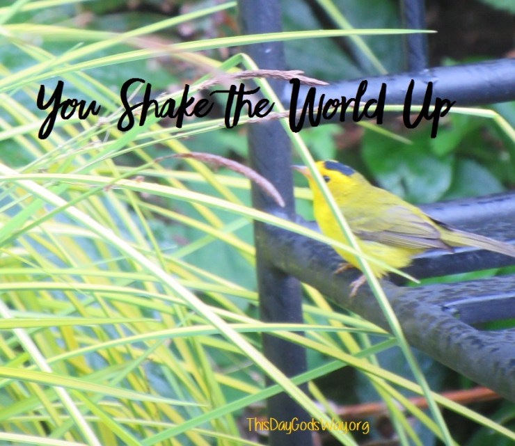 You Shake Up the World A Little. Your Small Acts Are Noticed.