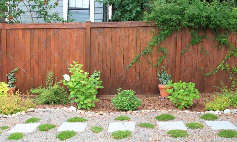 Cedar fence with wire trellis holding vines. Flower bed in foreground with rock border. Step stones on gravel path with ground cover planted in between each stepping stone.
