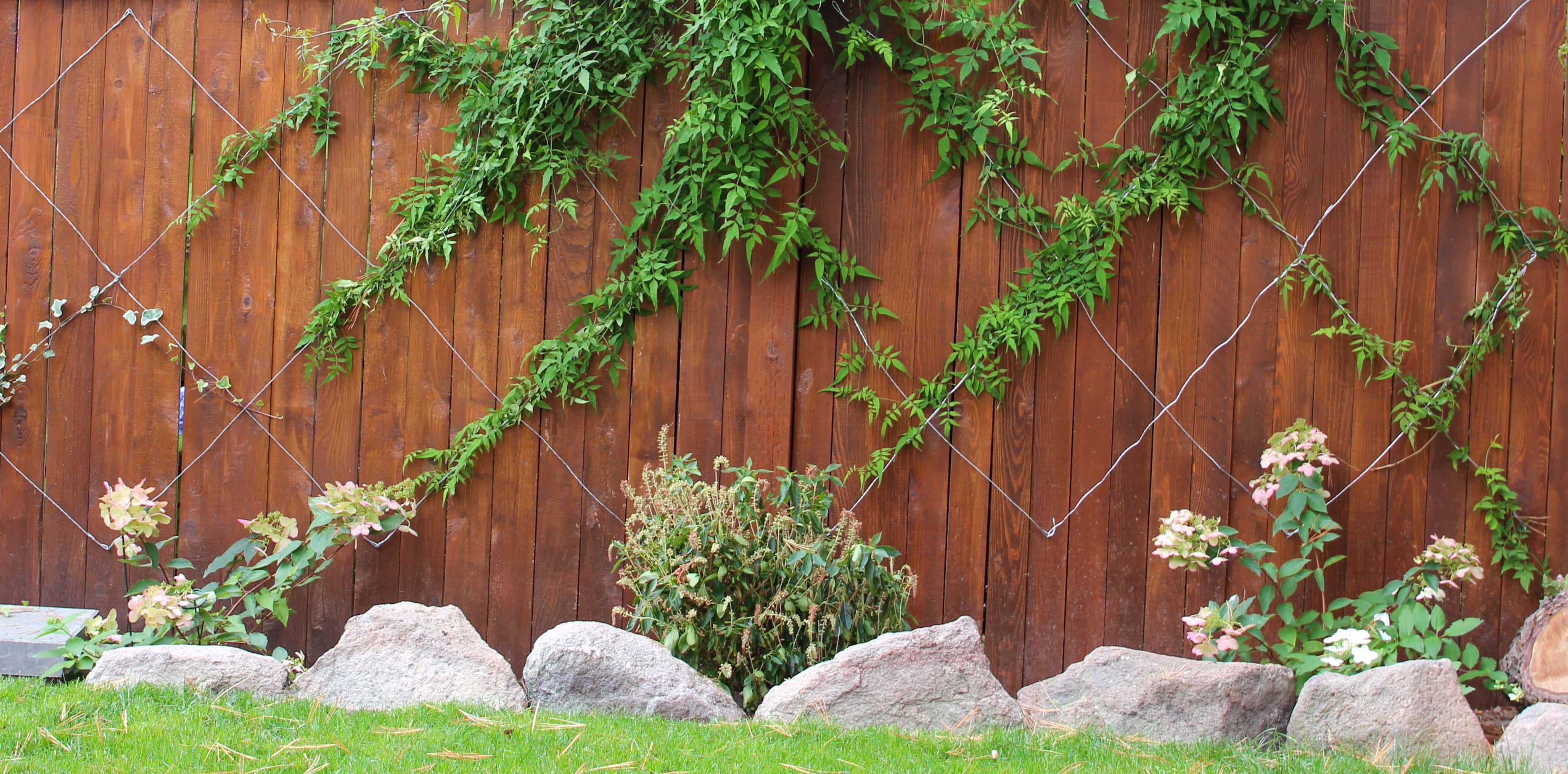 5 Tips For Staining A Fence