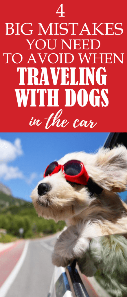 Are you going on a road trip with your dog? Or are you driving with dogs in the car on a daily basis? Learn how to keep your dog safe by avoiding these 4 big mistakes when traveling with dogs in the car.