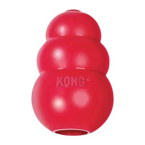 kong dog toy / keep dogs busy while at work