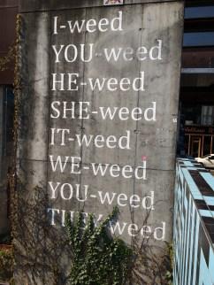 SEE-weed