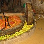 the process in making cider