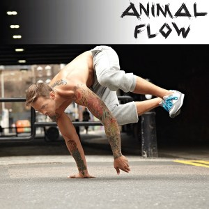 Animal Flow Workshop