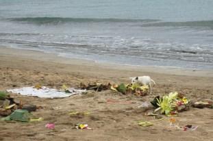 Littered beach