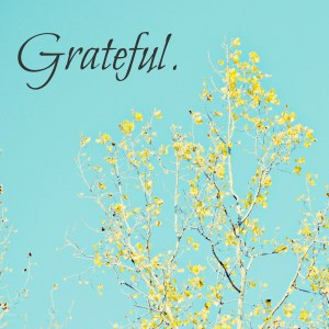 Grateful | thisgratefulmama.com