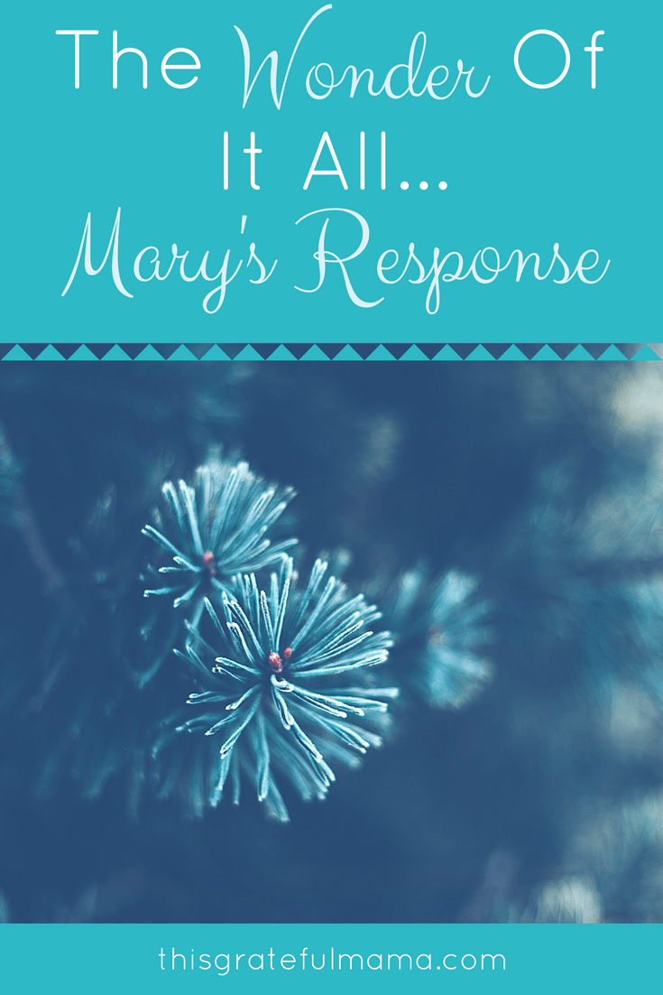The Wonder Of It All - Mary's Response | thisgratefulmama.com #thisgratefulmama #mary #faith #women #christmasstory