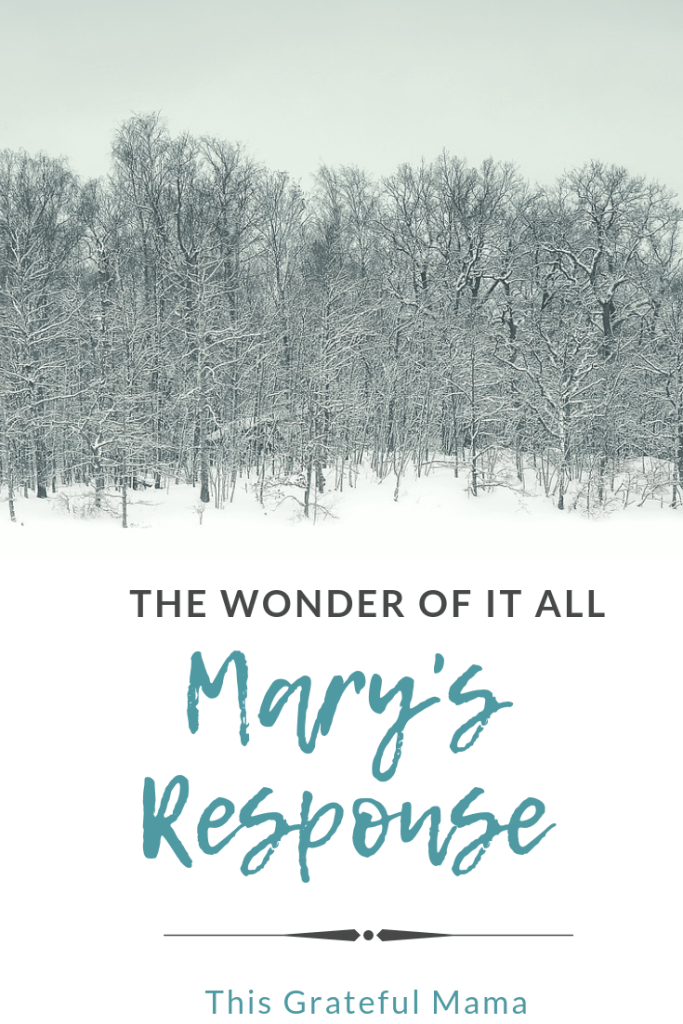 The Wonder of It all: Mary's Response | ThisGratefulMama.com #mary #christmas #wonder #christmasstory #jesus #faith