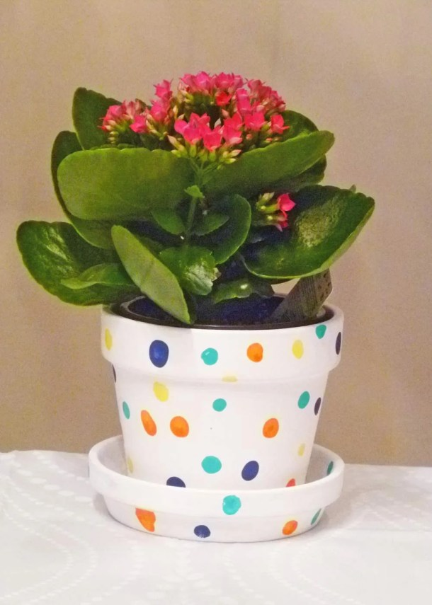 Polka Dot Fingerprint Flower Pot
