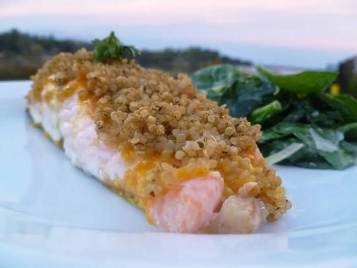 Quinoa Crusted Salmon -- Sweetened mustard glazed salmon with a crunchy, quinoa crust. | thishappymommy.com