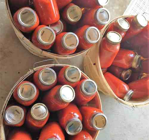 homemade tomato sauce jarred