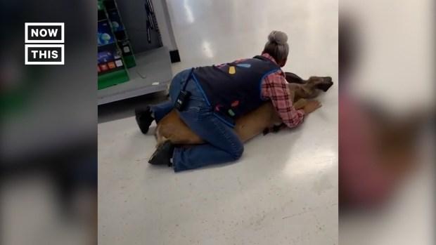 Walmart Employee Tackles Deer in Wisconsin Store