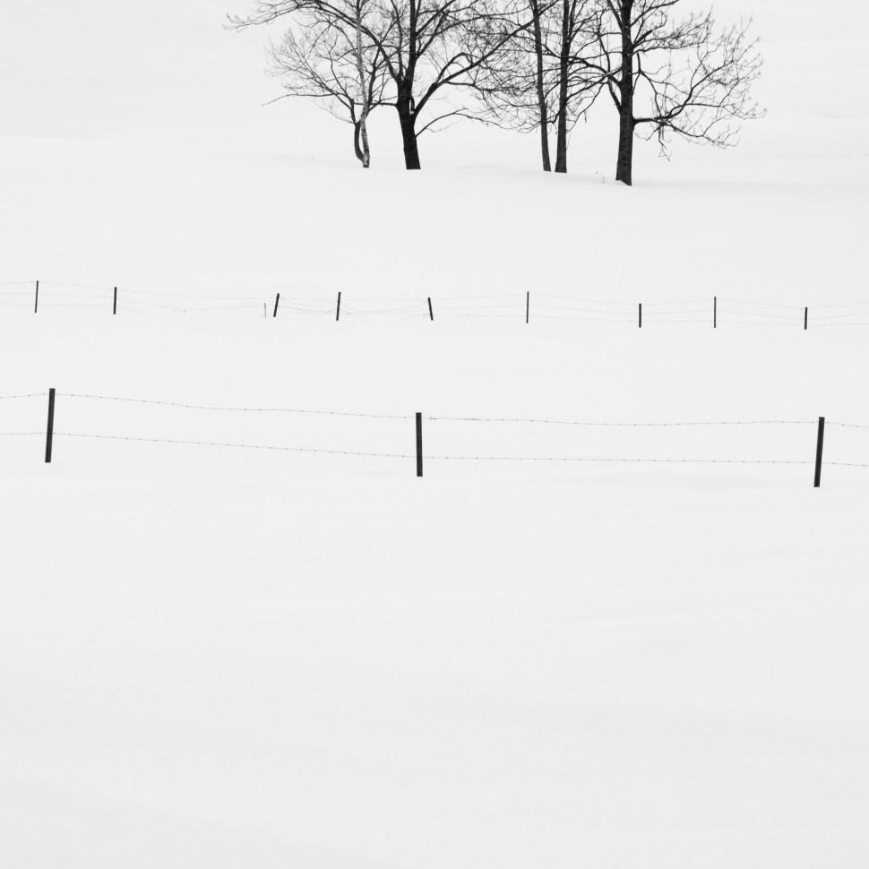 Hokkaido, Japan.
