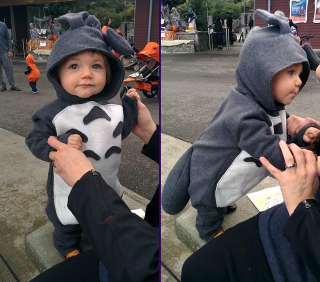 The Tiniest Totoro!