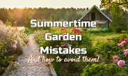 The 5 Most Common Summer Landscape And Garden Mistakes!