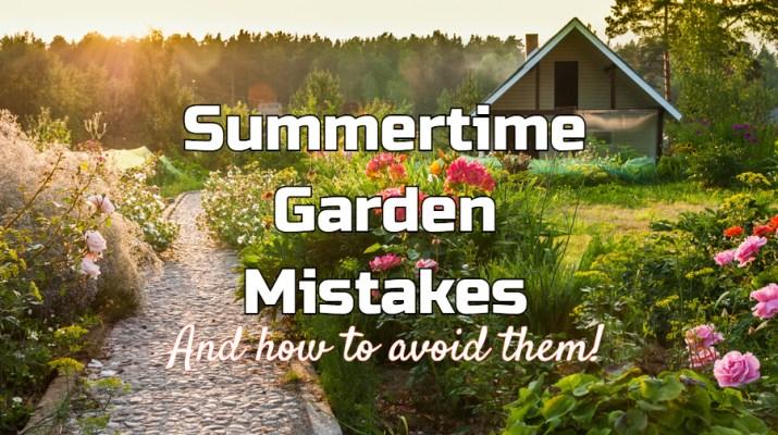 summer garden mistakes