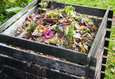fall garden clean up