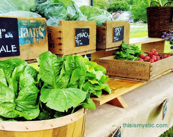 Farmers Markets in Mystic area