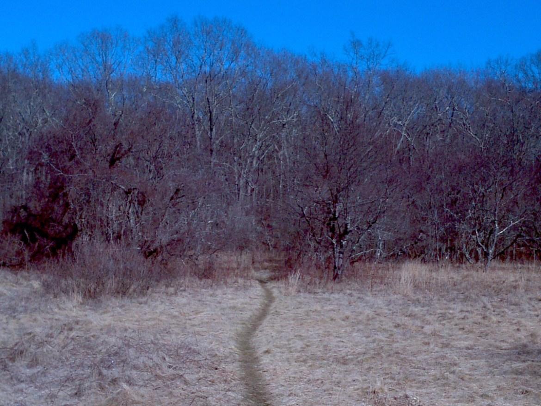Hiking Trail Copp Property