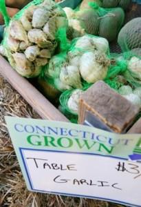 mystic garlic festival