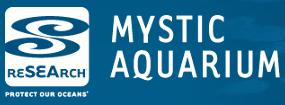 Volunteer for Mystic Aquarium