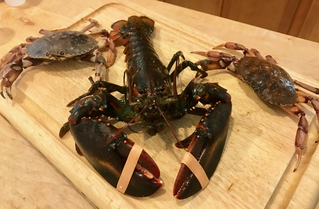 Stonington lobster and crab