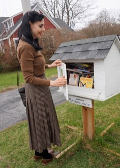 little free library ct (1)