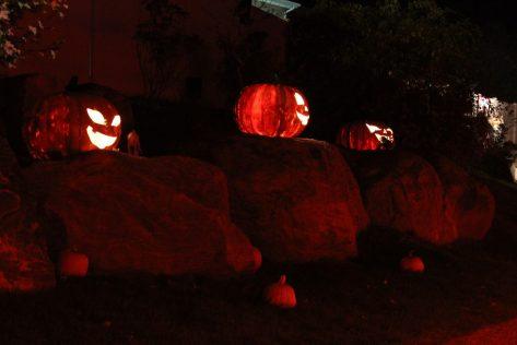 3-big-pumpkins