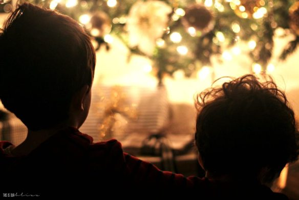 boys-in-front-of-the-tree