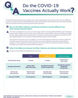 Do the COVID-19 Vaccines Actually Work?