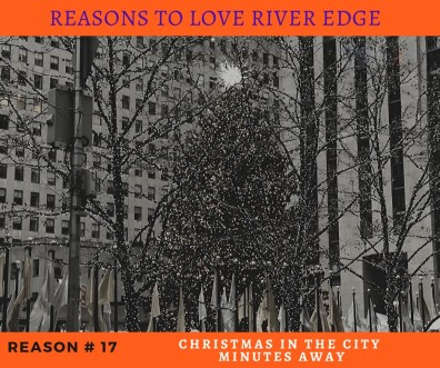 Reasons to Love River Edge - Christmas in the City Minutes Away