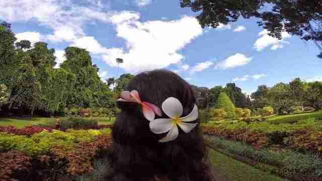 Paraiso de jardines de Kandy