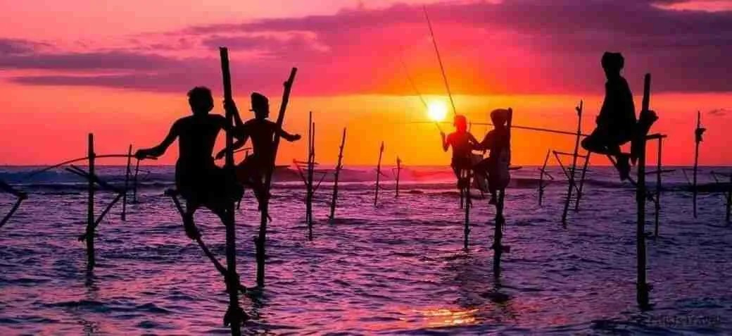 Pescadores típicos de Sri Lanka sobre palos en el mar