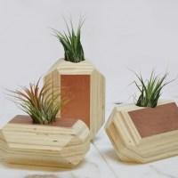 Geode_planter-10